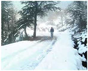 mcleodganj-tours-packages