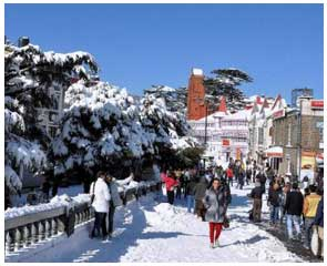 shimla-local-sightseeing