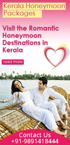 kerala-honeymoon